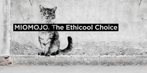 Miomojo_Ethicool-Choice-568x284